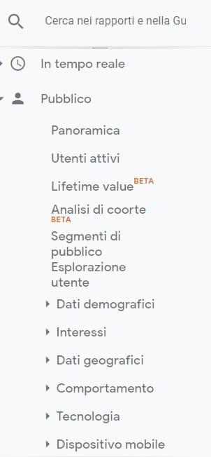 Google Analytics Pubblico