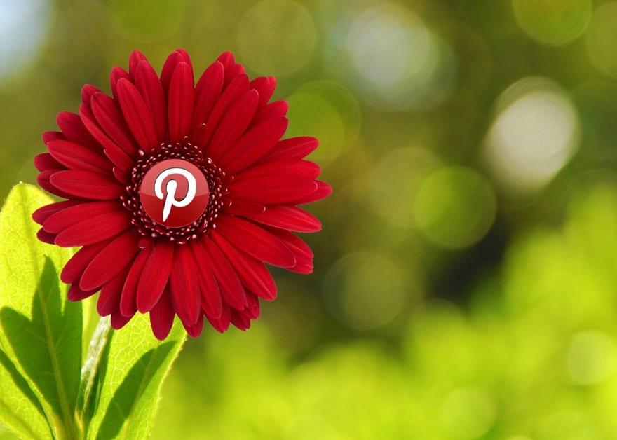 Pinterest vanta oltre 250 milioni di utenti in ogni parte del globo