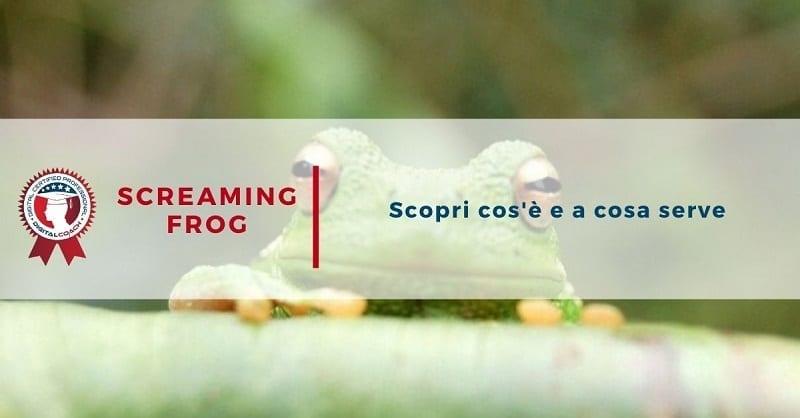 Screaming Frog è un software imperniato sull'utilizzo di un crawler al quale spetta il compito di reperire le informazioni richieste